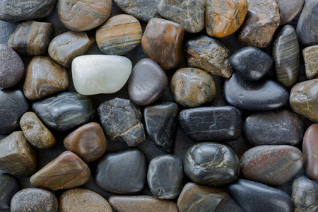 distinctive: Black brown colorful stones with one white pebbles standing out between dark ones, natural colors