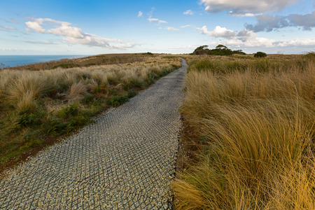 Grass along smooth path on top of The Nut State Reserve Plateau tableland in Stanley during Autumn in Tasmania, Australia. The nut is old volcanic plug of basalt with the height of 143 meters rising from the Bass sea Strait.