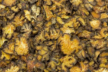 黄色茶色のクローズアップスライス乾燥四川愛、伝統的な中国医学として使用される開花植物(リグスティカムストライタム) 写真素材