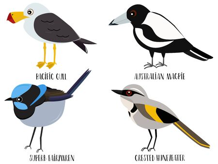 Vector illustration of cute bird cartoons - Pacific gull, Australian Magpie, superb fairywren, crested honeyeater