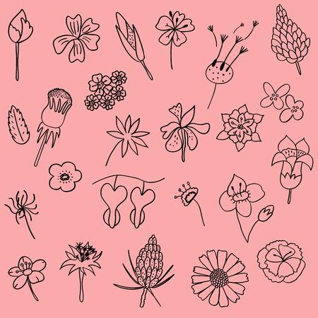 Vector illustration set of hand drawn flower leaf doodle as graphic design floral elements