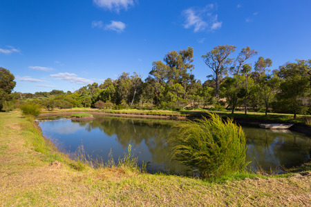 Tranquil view of oval pond surrounded by garden, big tree, blue sky during summer in Australia