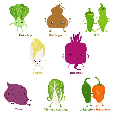 Cute vector of square shaped smiling fruit, vegetable with happy face - Bok choy Okra Beetroot Bottle gourd Taro Endive Chinese cabbage Jalapeno Habanero. Colorful set of food illustration isolated on white background