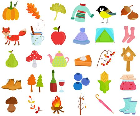 Vector of Autumn Fall season set, seasonal decoration theme in flat design illustration. Bundle of cute colorful icon collection isolated on white background.vector, autumn, fall, season, pumpkin, oak, gingko, sweater, cold, bird, great tit, chestnut, fox, animal, mulled wine, beverage, apple, beanie, tent, sock, pear, mushroom, kettle, pie, berry, bird house, boots, hiking, shoes, tree, wine, blueberry, corn, harvest, jam, preserve, bolete, toadstool, fire, camping, umbrella, tea, wildlife, cinnamon, fruit, grains, alcohol, pastel, color,