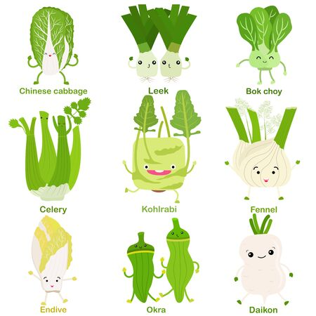 Cute vector of square shaped smiling fruit, vegetable with happy face in green color - Cabbage Leek Bokchoy Celery Kohlrabi Fennel Endive Okra Daikon. Colorful illustration set on white background