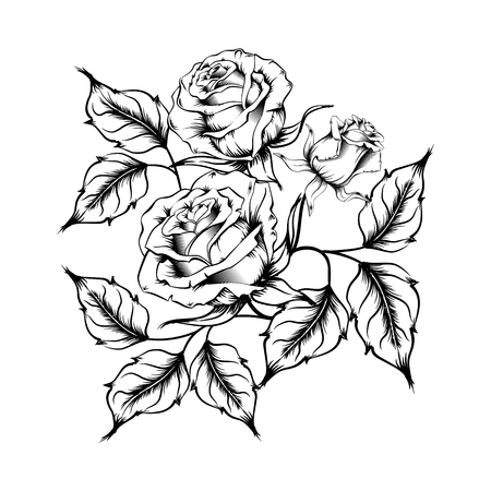 Rose tattoo. Silhouette of roses and leaves on a white background. Linework style. Pattern of roses Stok Fotoğraf
