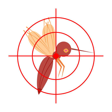 Mosquito, gnat, midge and aim, target. Side view. Insect protection concept. Isolated vector illustration on white background.