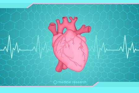 Medizinische Forschung für die menschliche Gesundheit. Vector Zeichnung eines anatomisch wahren menschlichen Herzens auf einem futuristischen Hintergrund.