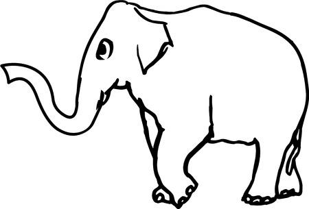 proboscis: Vector illustrated elephant on the white background Illustration