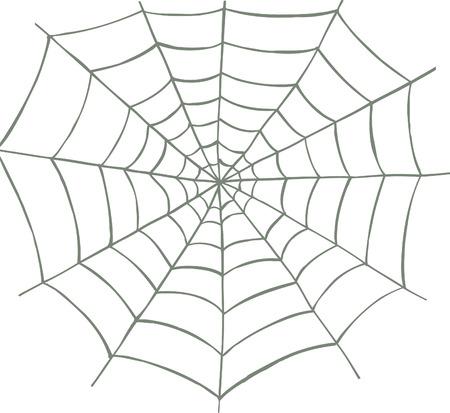 Vector geïllustreerd spinnenweb op witte achtergrond