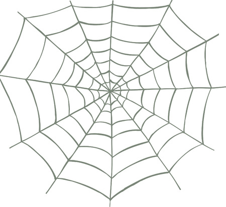 spiderweb: Vector illustrated spider web on white background