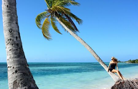 Blonde girl sitting on the palm tre near the sea