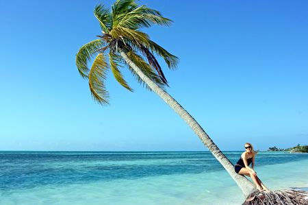 Blonde girl in sunglasses sitting on the palm tree
