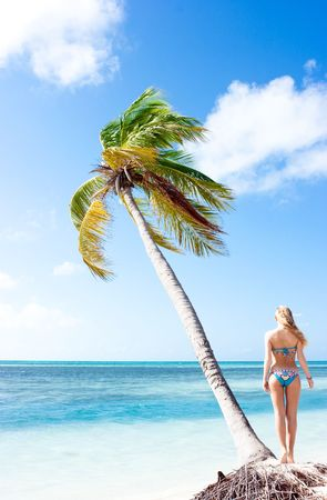 Tranquil scene with palm tree and blonde girl at the sea