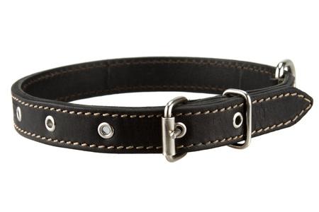 黒レザー犬の首輪