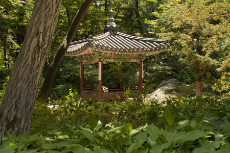 recreational area: Seoul, South Korea-May 21, 2015: Soyojeong, Secret Garden of Changdeokgung Palace, Seoul, South Korea on May 21, 2015 - The forbidden place for the recreational area and retreat for the royal family. The Secret Garden, the secluded rear garden of the pala