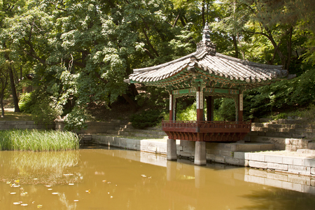 recreational area: Seoul, South Korea-May 21, 2015: Aeryeonjeong, Secret Garden of Changdeokgung Palace, Seoul, South Korea on May 21, 2015 - The forbidden place for the recreational area and retreat for the royal family. The Secret Garden, the secluded rear garden of the p Editorial