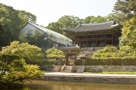 recreational area: Seoul, South Korea- May 21, 2015: Secret Garden of Changdeokgung Palace, Seoul, South Korea on May 21, 2015 - The forbidden place for the recreational area and retreat for the royal family. The Secret Garden, the secluded rear garden of the palace, was us