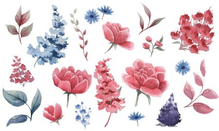 Set of floral elements. Flowers pink peonies, green, burgundy, blue leaves. Gentle concept with flowers. Watercolor arrangements for greeting card or invitation design