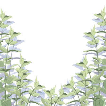 Background or frame with green leaves on a white background. Background for design and decoration. Stok Fotoğraf