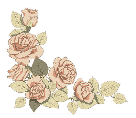 omposition of delicate roses and green leaves. Illustration for creating cards, decoration, decoration, prints, wedding invitations, etc. Flower illustration Фото со стока