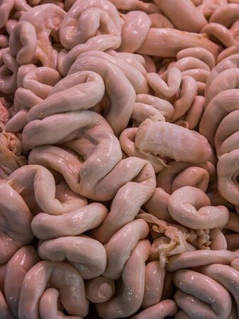 chitterlings: Raw pork intestines in market,Thailand market.
