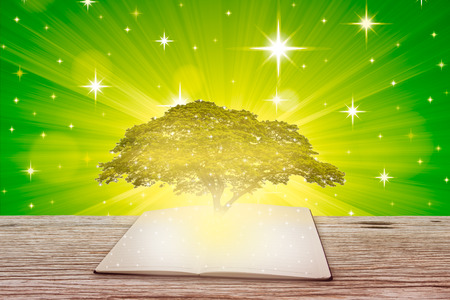 Open book on a wooden board and a large tree, Education concept background.