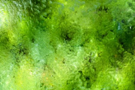 유리, 추상 미술 배경 통해 흐르는 물으로 그린 트리 반사 유리 자연입니다.