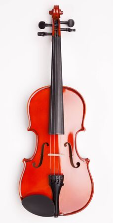 New violin on a white background Stock Photo - 19063725