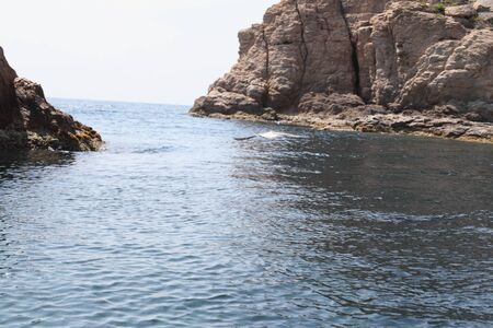 Rocks and reefs in the coastal zone of the Mediterranean sea at the coast of Catalonia in the summer