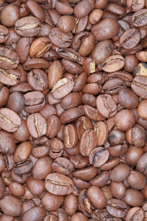 Grain roasted coffee cinnamon color close-up. photo