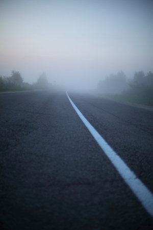 Fog early summer morning covers forest and passing on it, asphalted road