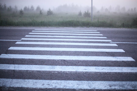Crosswalk, marked with bright white lines closeup early summer morning.