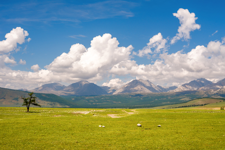 Beautiful scenery between the lake Hovsgol and the mountains of Eastern Sayan, Mongolia