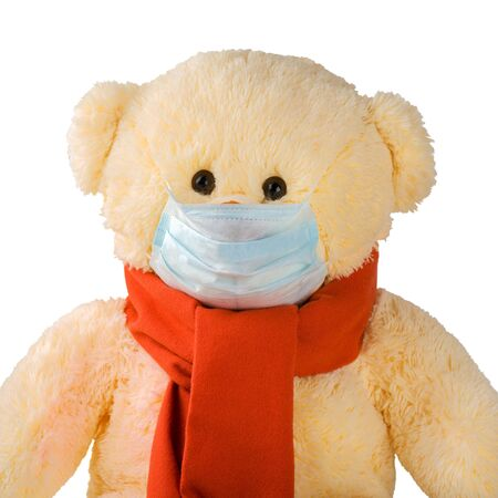 Teddy bear with a scarf and mask isolated on white.