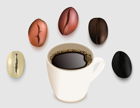 Cup of coffee and coffee beans vector 3d realistic illustration. Green unroasted and roasted coffee bean. Very light, medium light brown medium dark brown and dark brown degrees of roast. Illustration