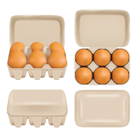 Vector egg carton consumer pack set Vectores