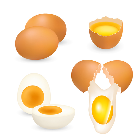Chicken eggs set, vector realistic illustration.