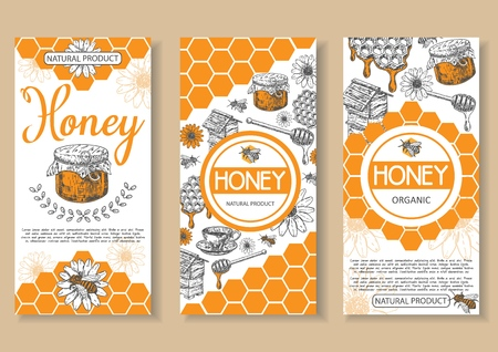 Bee natural honey vector poster, flyer, banner set. Hand drawn honey natural organic product concept design elements for honey business advertising.  イラスト・ベクター素材