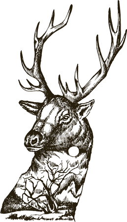 Stylized deer head with nature landscape. Vector ink hand drawn illustration isolated on white background. Tattoo art design.