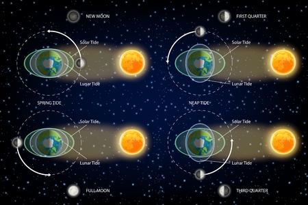 Lunar and Solar tides diagram. Vector illustration. Educational poster, scientific infographic, presentation template.