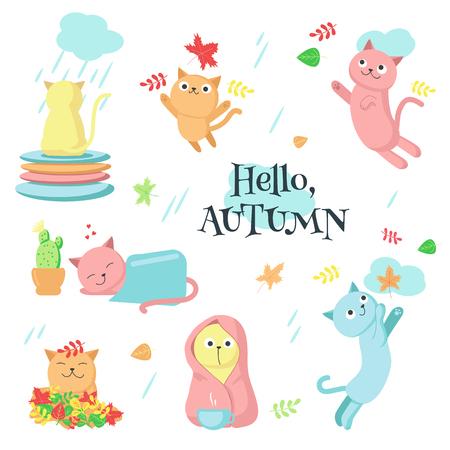 Autumn cat icon set vector isolated illustration 向量圖像