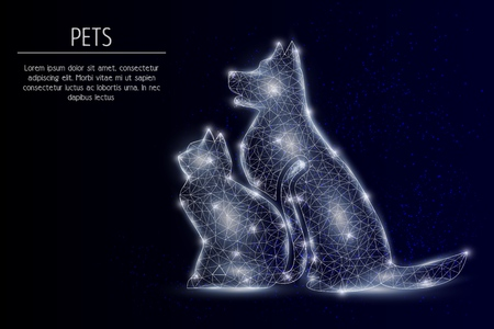 Cat and dog vector geometric polygonal background