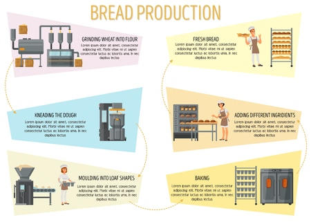 Bread production infographics. Vector flat style design illustration. Bread making process from flour grinding to baked fresh bread.