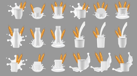 Paquet de yaourt aux céréales avec ensemble de maquettes d'éclaboussures de lait. Conteneur de tasse de bouteille en plastique blanc blanc réaliste de vecteur pour le dessert, yaourt avec des épis de blé et éclaboussures et versement de lait.