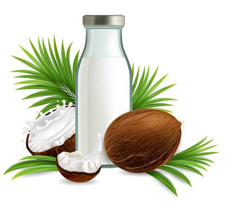 Organic non dairy coconut milk vector realistic illustration