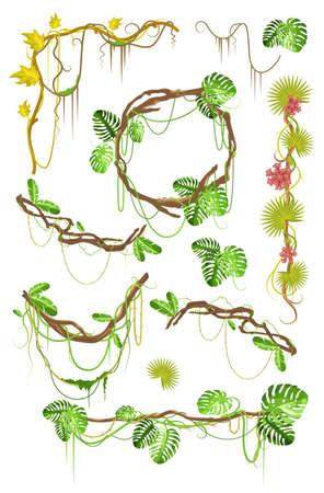 Tropical liana creeper plant decorative elements set, flat vector isolated illustration. Ilustracja