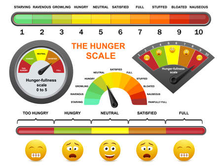 Hunger fullness scale, flat vector illustration. Intuitive eating, appetite control, mindful eating for weight loss. 向量圖像