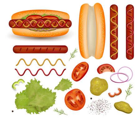 Hot dog and its ingredient set, vector isolated illustration. Ilustracje wektorowe