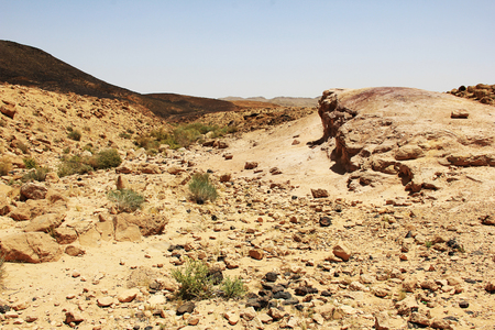 canyon negev: Negev desert and Ramon crater in Israrel.